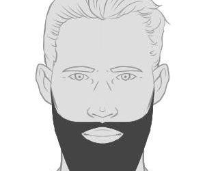 DerZZ – ein prachtvoller Bartstil